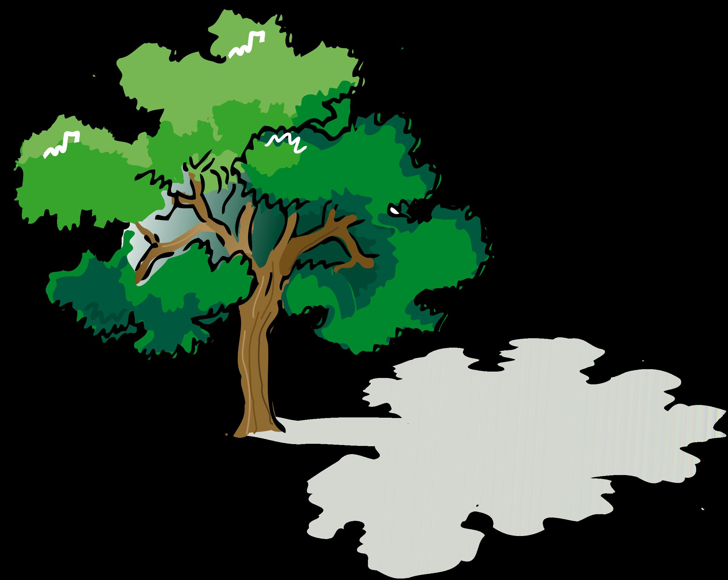 Clipart trees rainforest. Narra png transparent images