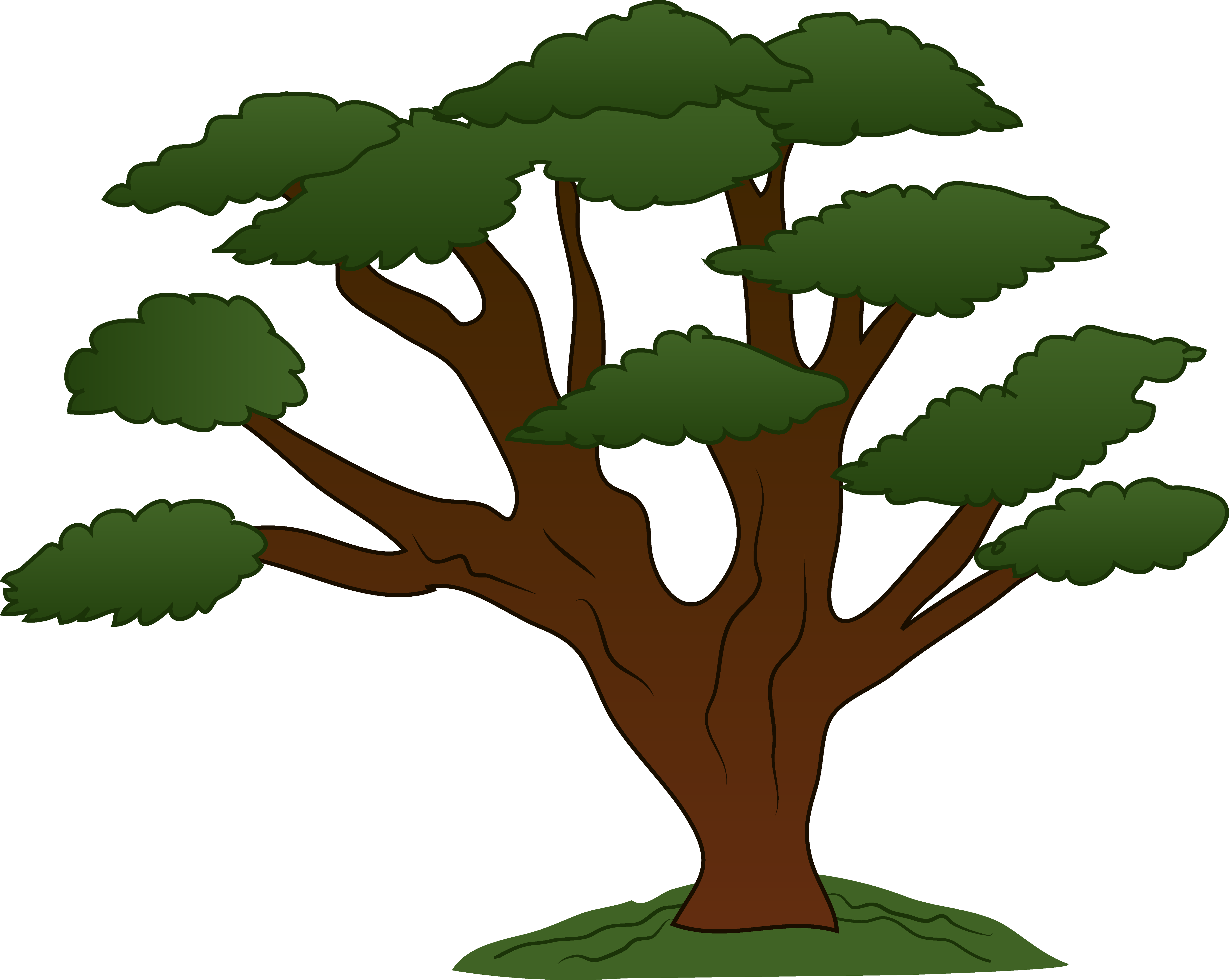 Plants clipart rainforest.  collection of trees