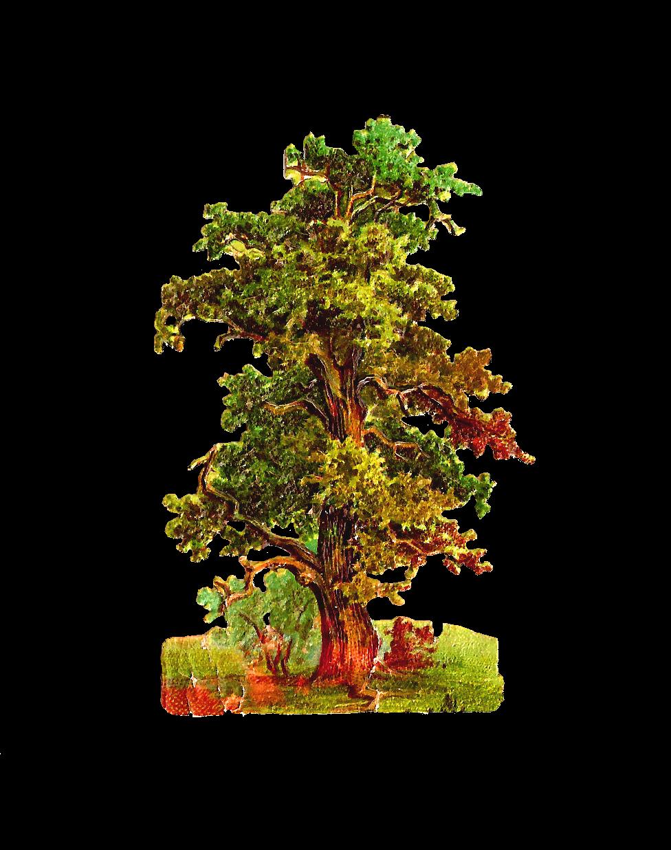 Tree clipart retro. Antique images free graphic