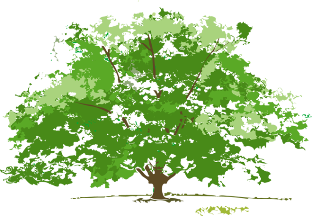 Free cliparts download clip. Clipart tree summer