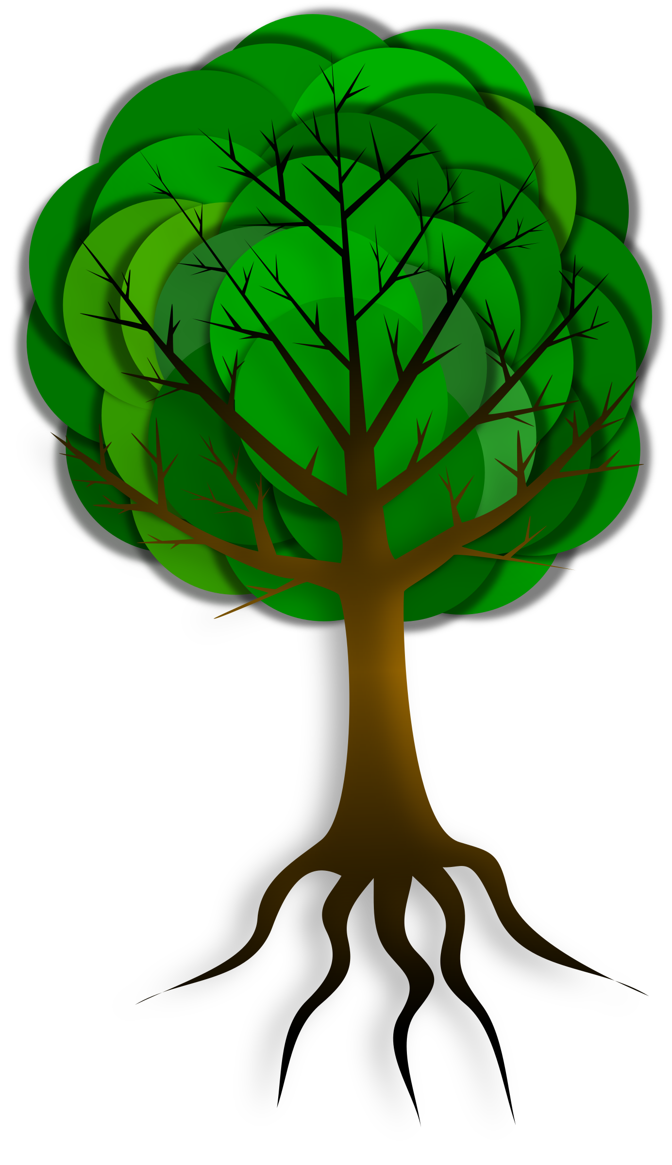 Tree clipart vegetable. Simple big image png