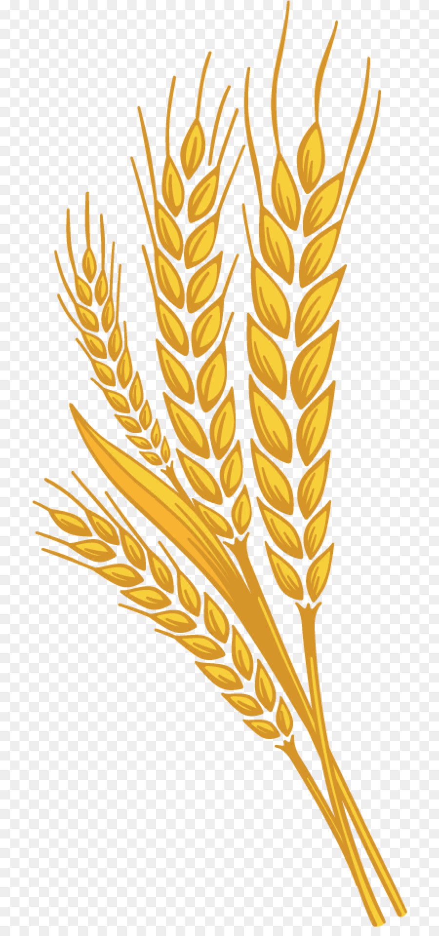 Family background plant food. Wheat clipart tree