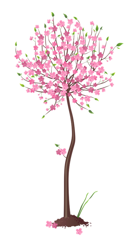 Volunteering clipart spring. How you can help