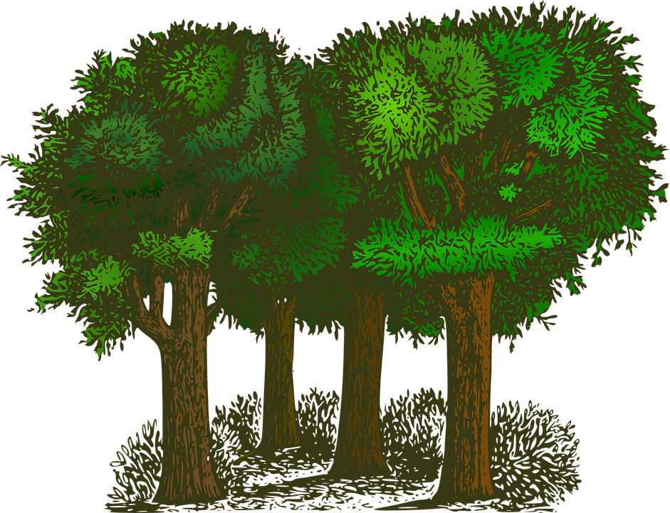Professional services are here. Clipart tree word
