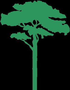 Tree clipart zoo. X free clip art