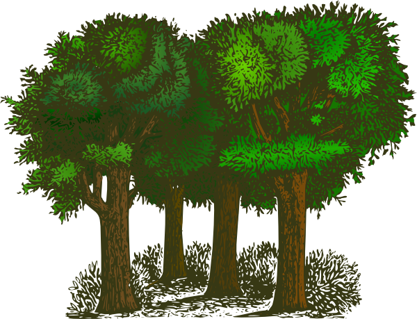 Group of trees . Tree clipart