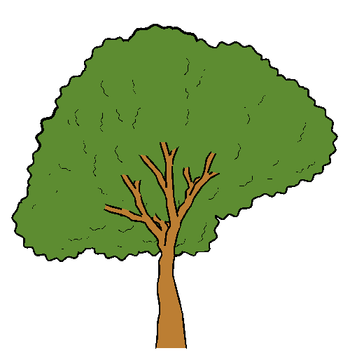 Poetry clipart animated tree. Free animation download clip