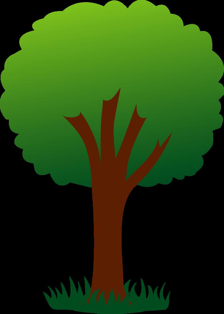 Sensational cartoon picture of. Color clipart tree