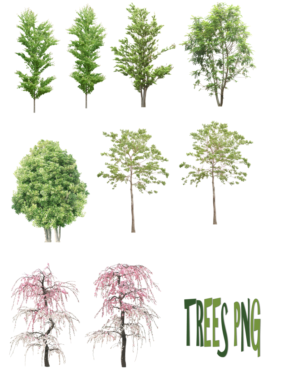 Planning clipart landscape architect. Trees png by mysticmorning