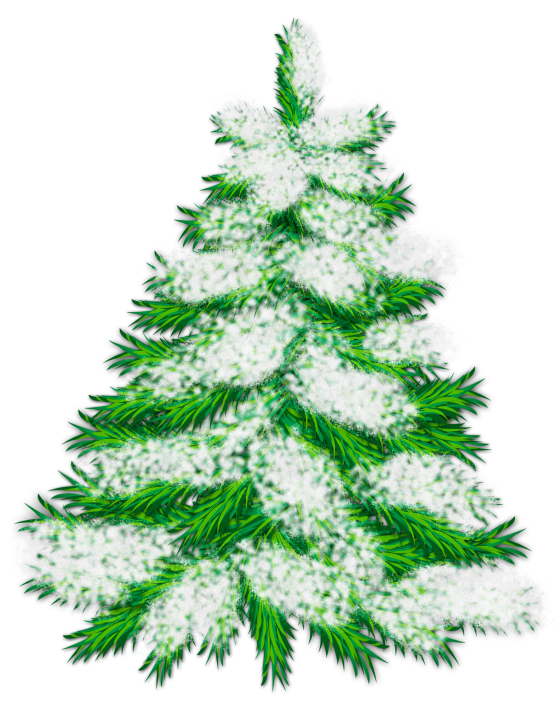 Winter clipart christmas tree. Snowy png gallery yopriceville