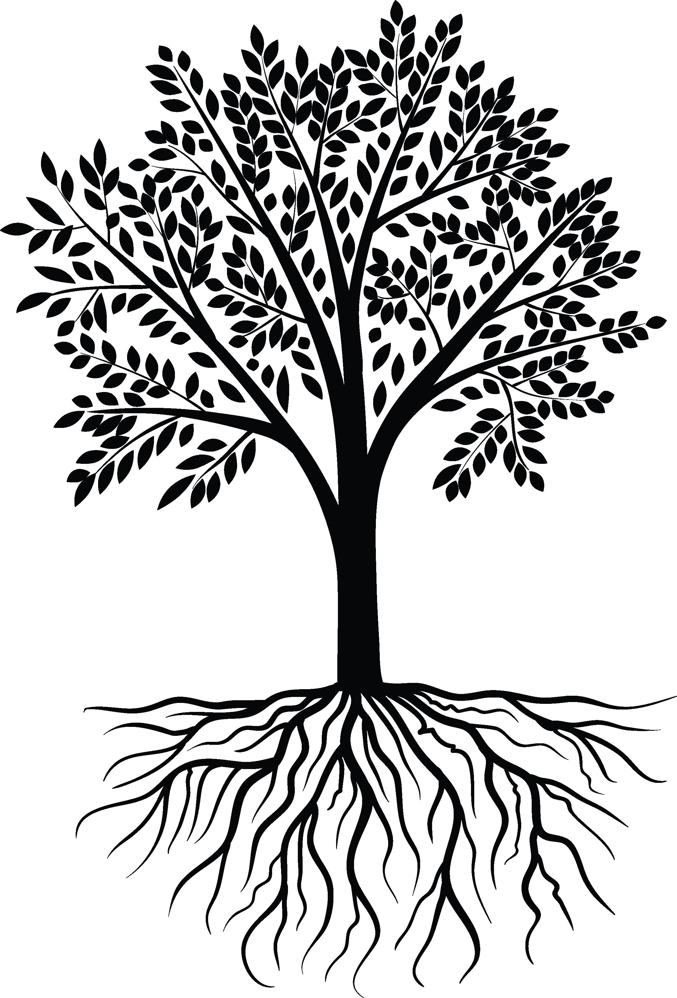 Black white design pinterest. Tree vector png