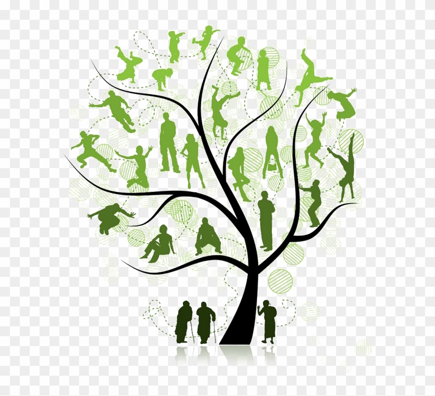 Family Tree Png Pic - Trees For Family Reunion Clipart ...