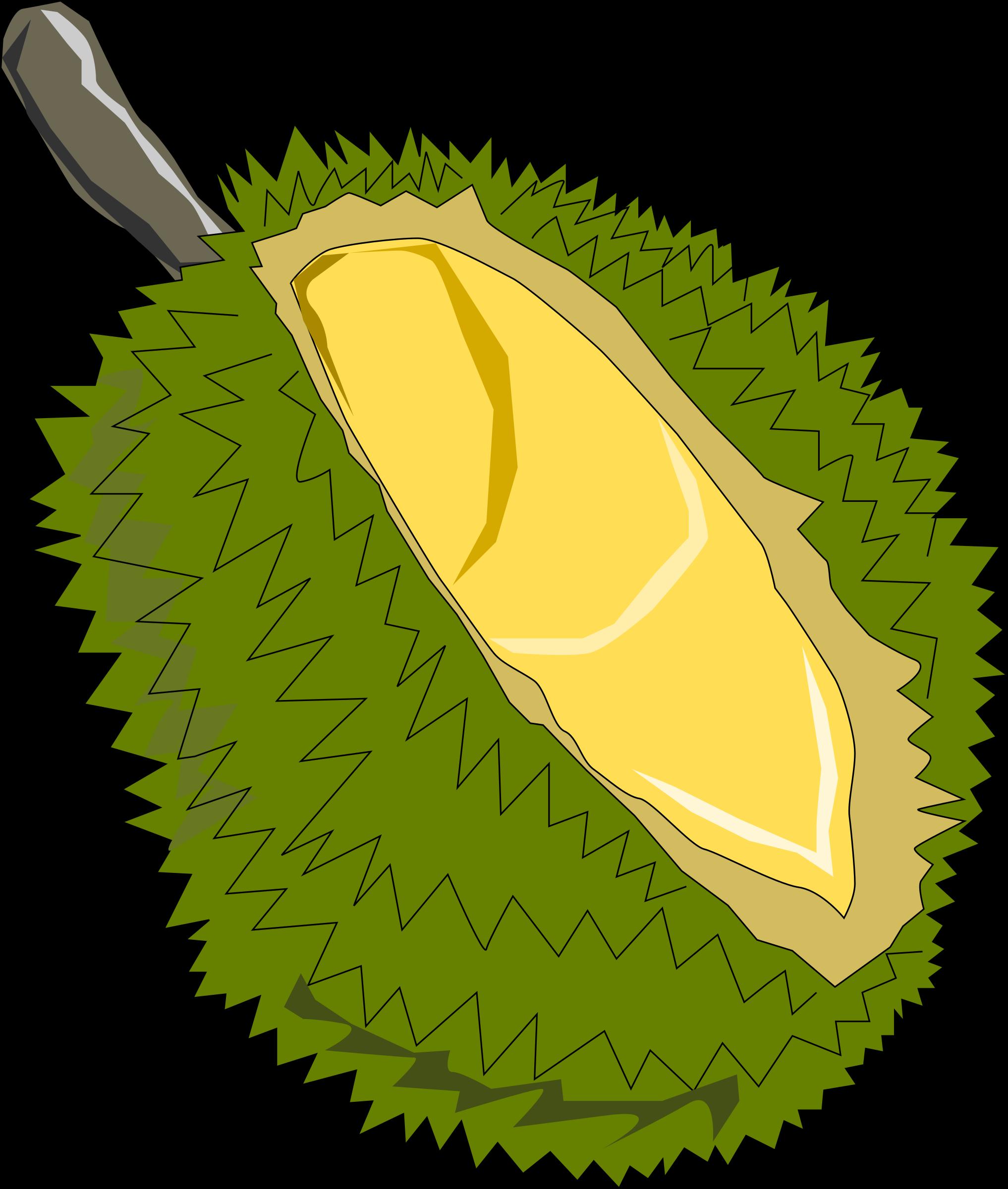Durian Drawing at GetDrawings