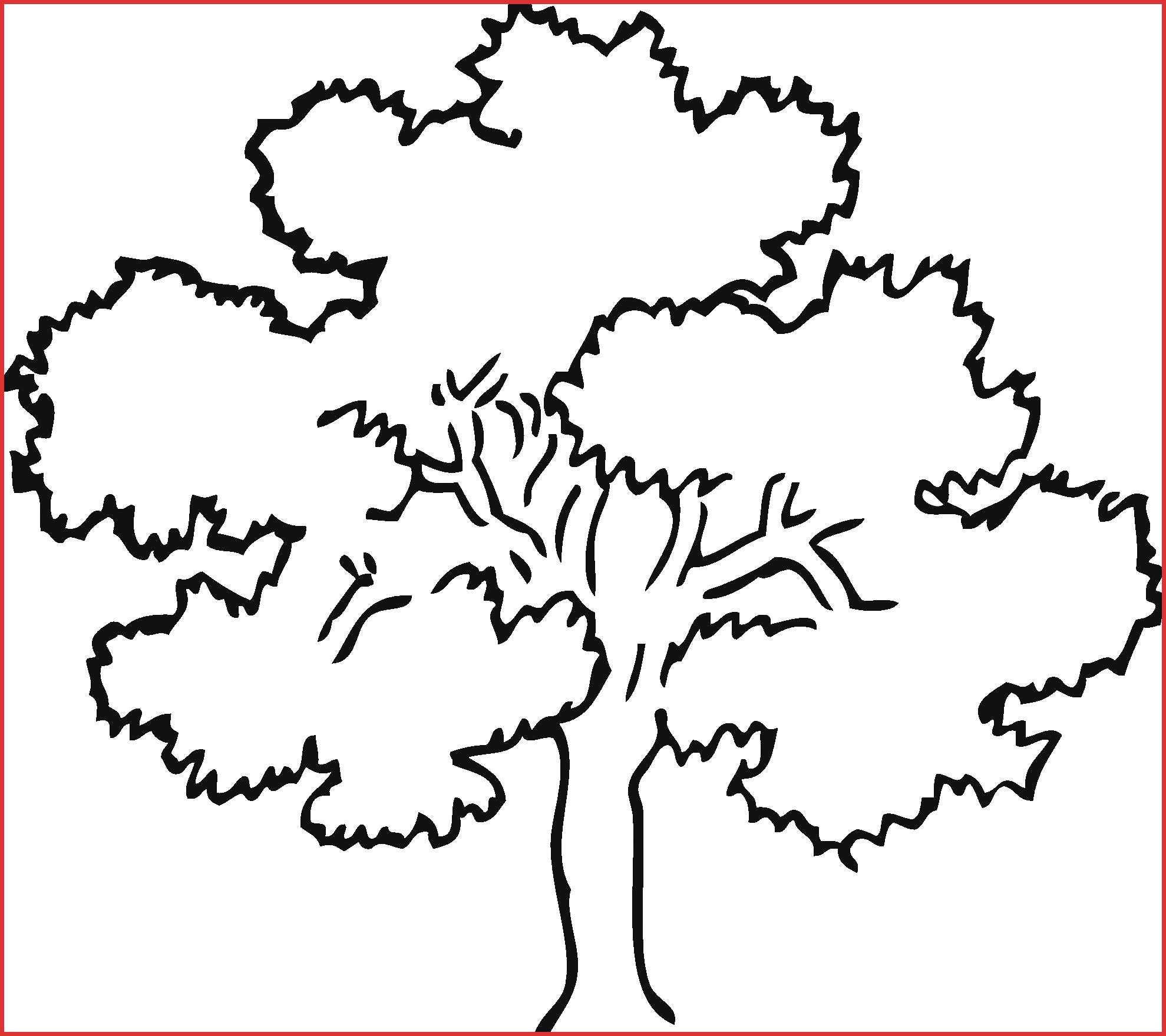 Fruits clipart santol. Tree drawing clip art