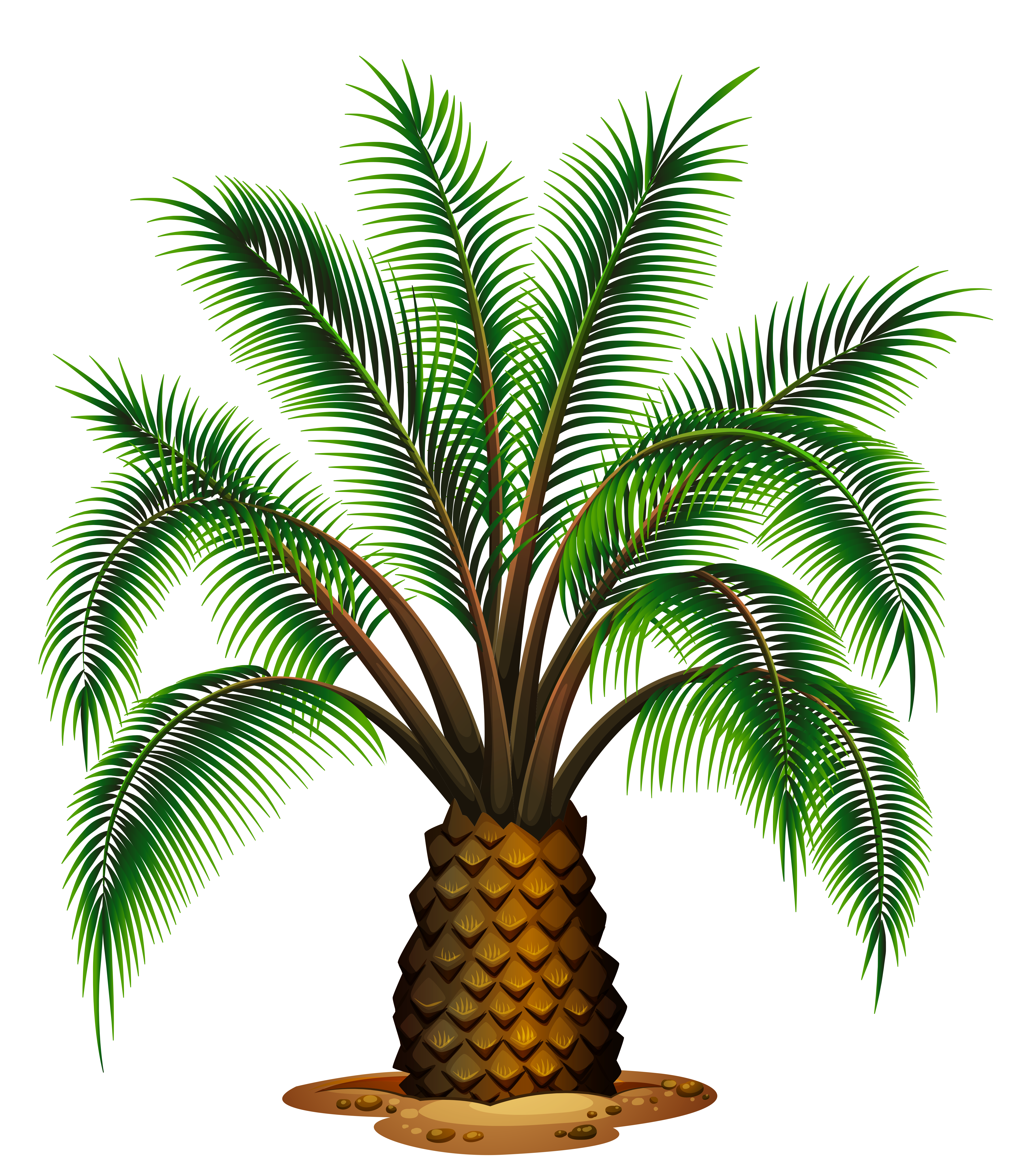 Tree pineapple pencil and. Palm clipart bunch