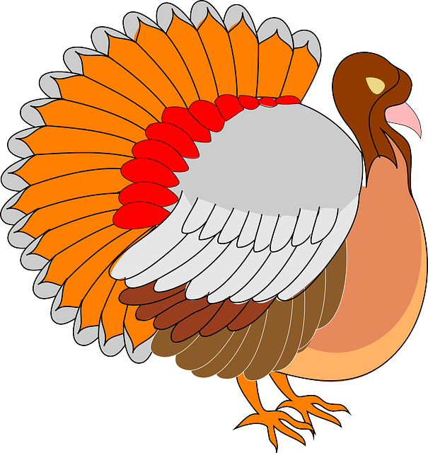 Clipart turkey. Soccer pencil and in