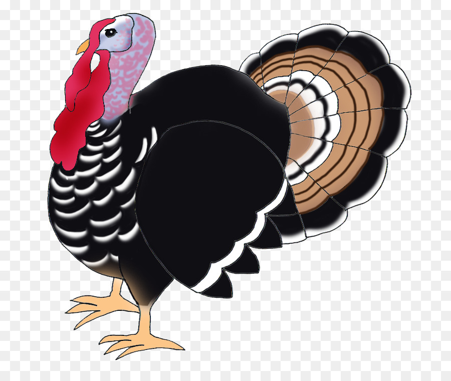 Thanksgiving cartoon . Clipart turkey bird turkey