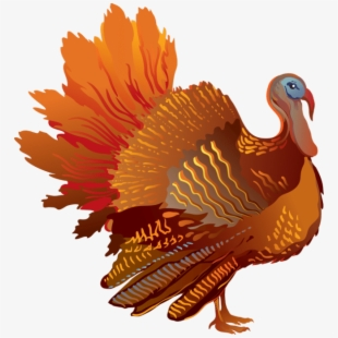 Clipart turkey translucent. Free cliparts silhouettes cartoons