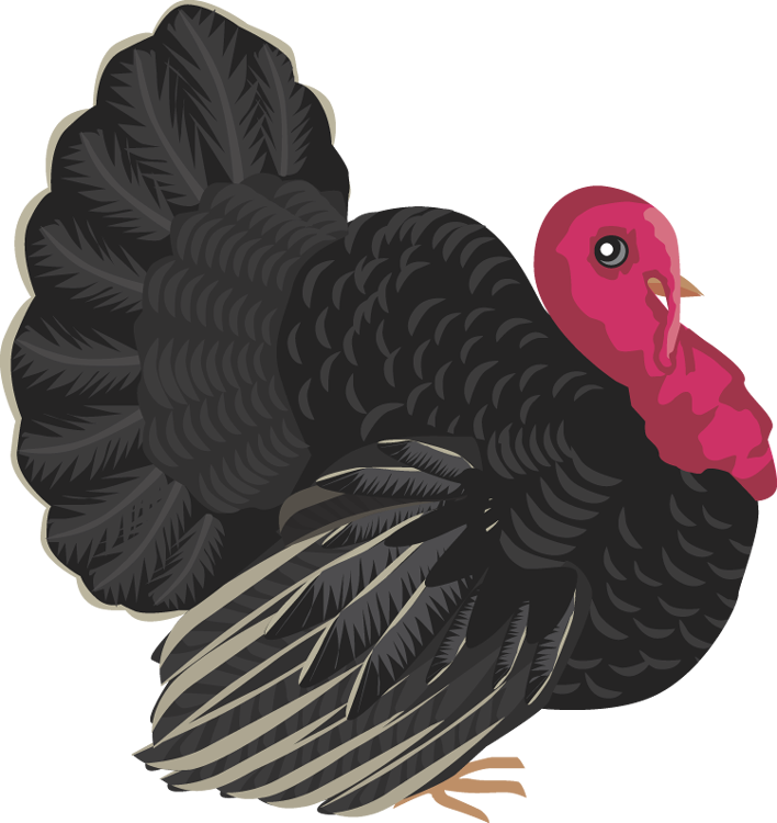 Clipart turkey wild turkey. Free black