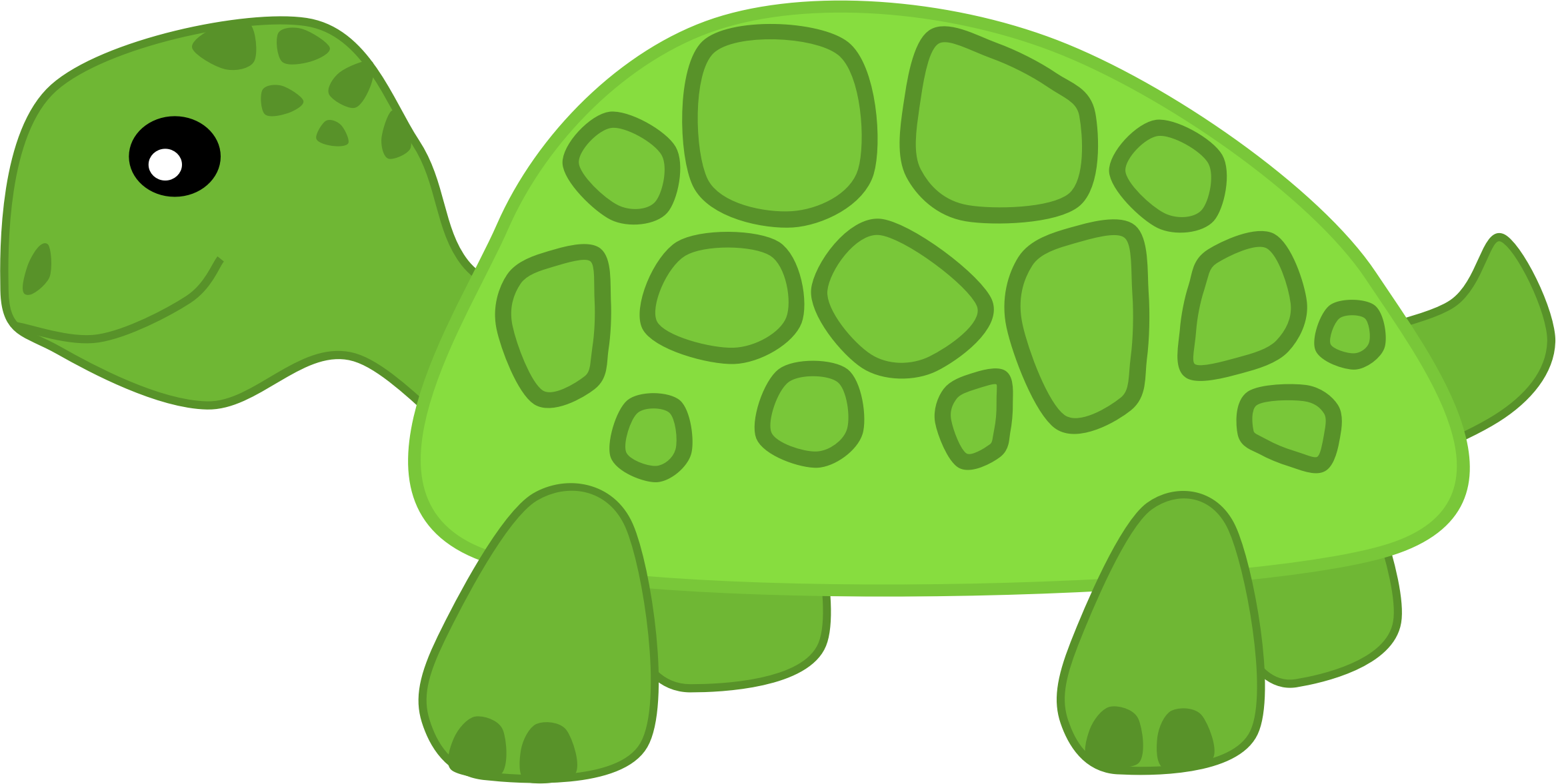 Shell clipart sea turtle.
