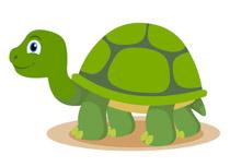 Reptiles clip art pictures. Clipart turtle