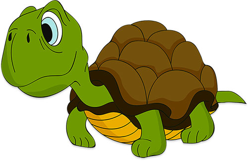 Free animations . Animals clipart turtle