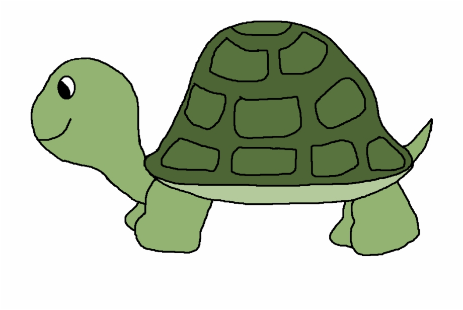 Clip art free cartoon. Clipart turtle