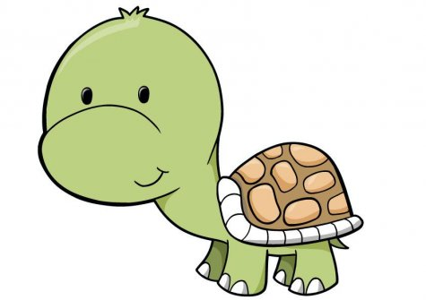 clipartlook. Clipart turtle baby turtle