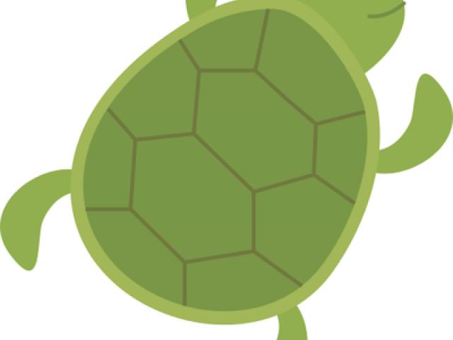X free clip art. Clipart turtle body