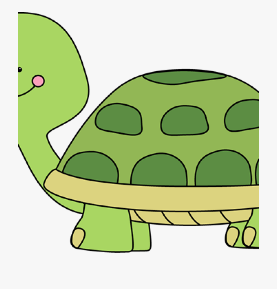Free cute . Clipart turtle body