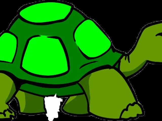 Clipart turtle body. X free clip art