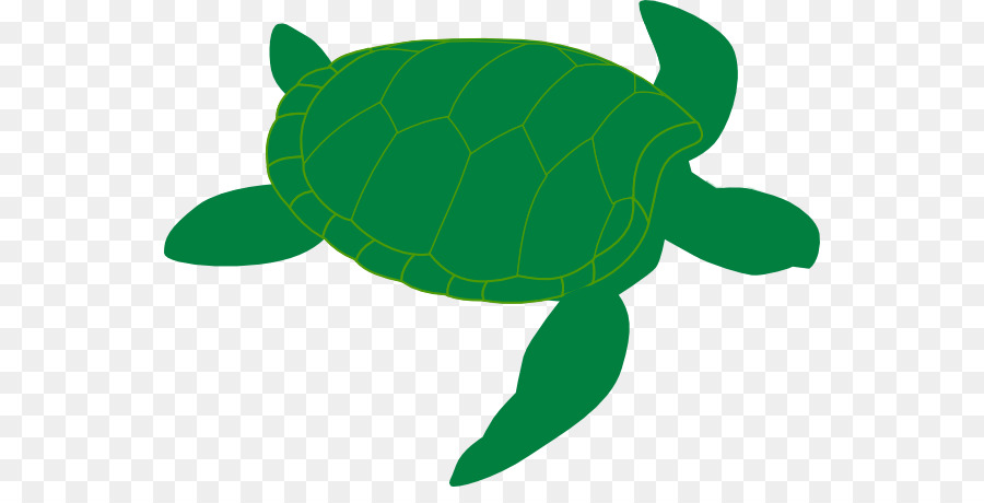 Clipart turtle clear background. Sea green leaf