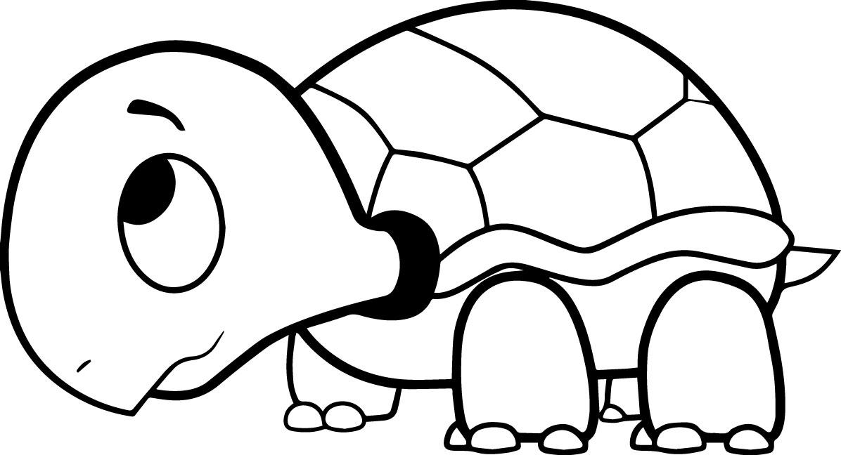 Collection of turtles free. Clipart turtle coloring