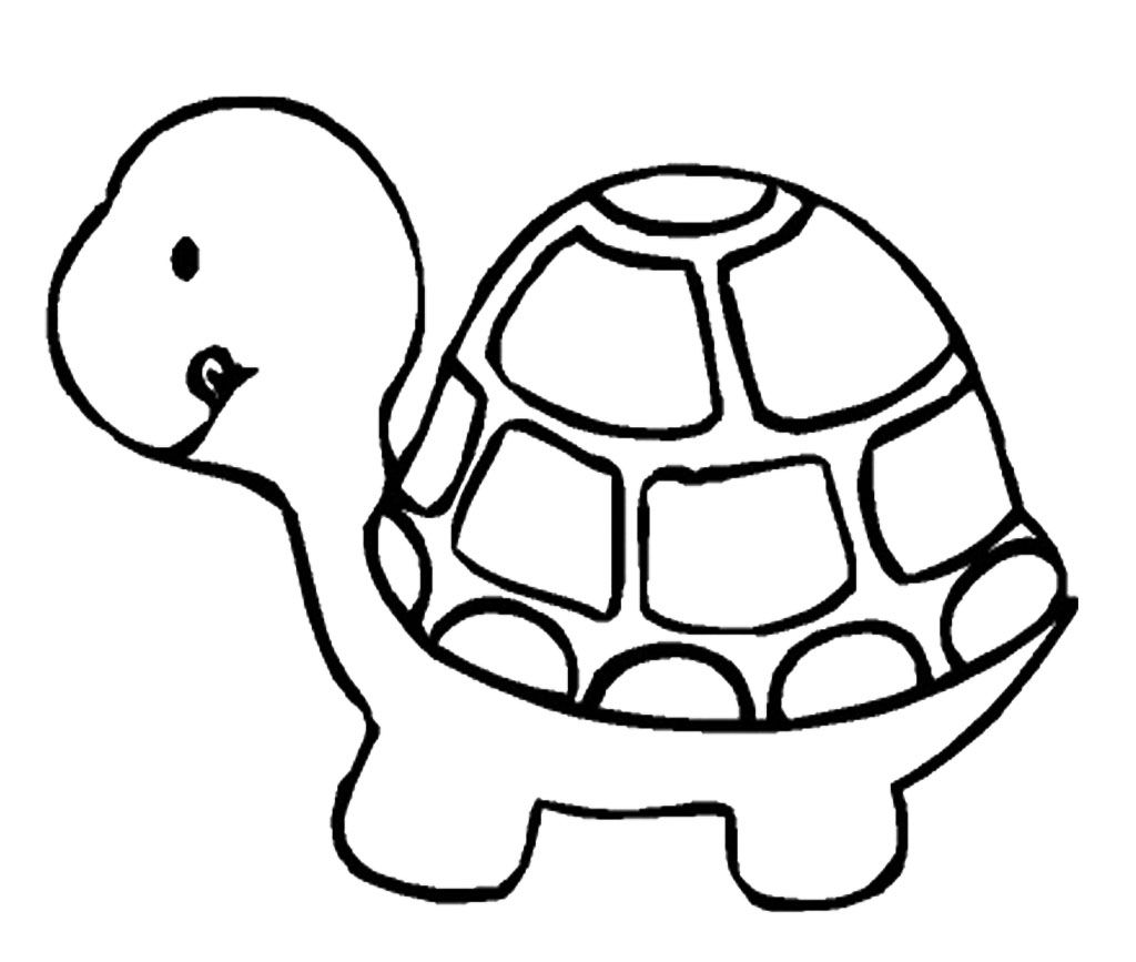 Clipart turtle coloring. Drawings with elsie s