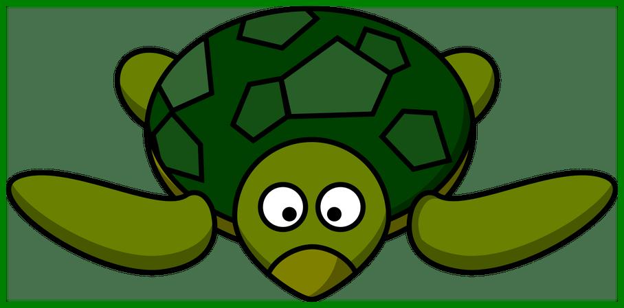 Clipart turtle cute. Amazing clip art on
