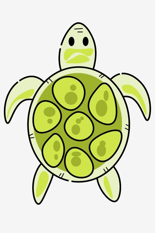 Clipart turtle decoration. Green three dimensional ocean