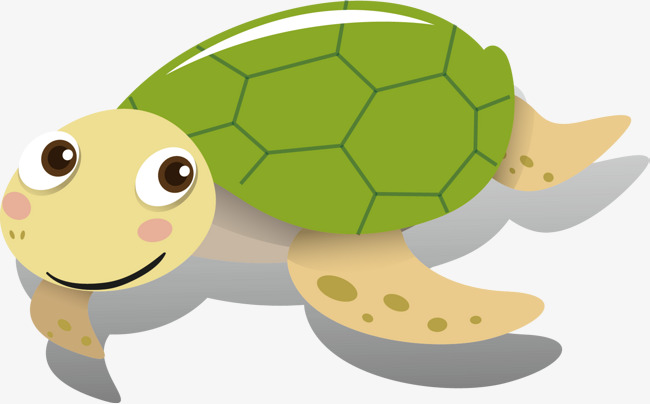 Design tortoise . Clipart turtle decoration