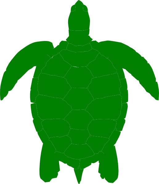 Free printable turtles coloring. Shell clipart sea turtle