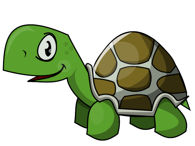 The strongest nds team. Race clipart turtle