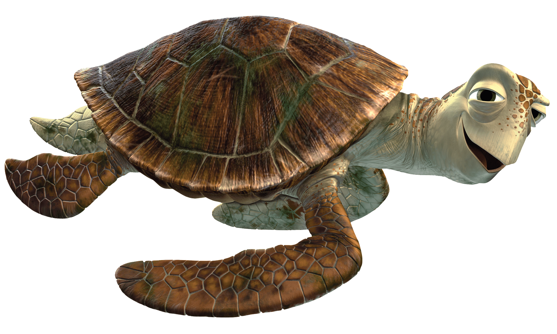 Finding transparent png images. Dory clipart nemo turtle