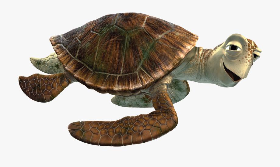Finding free . Dory clipart nemo turtle