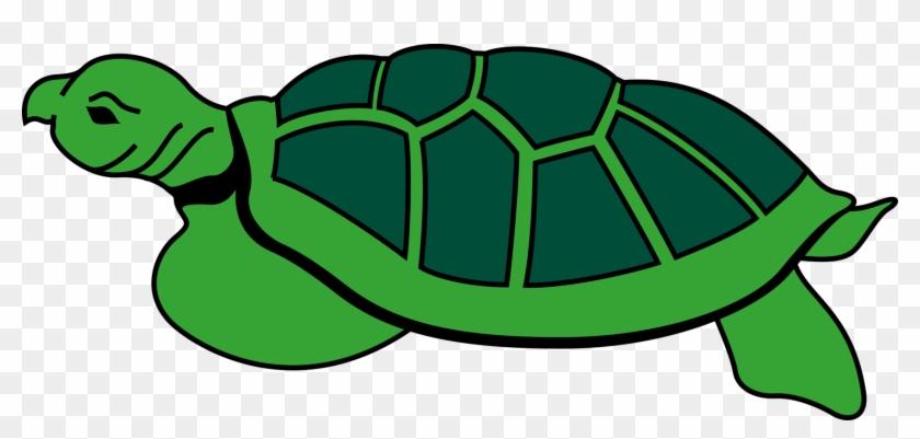 Clipart turtle gambar. Animal reptile tortoise to