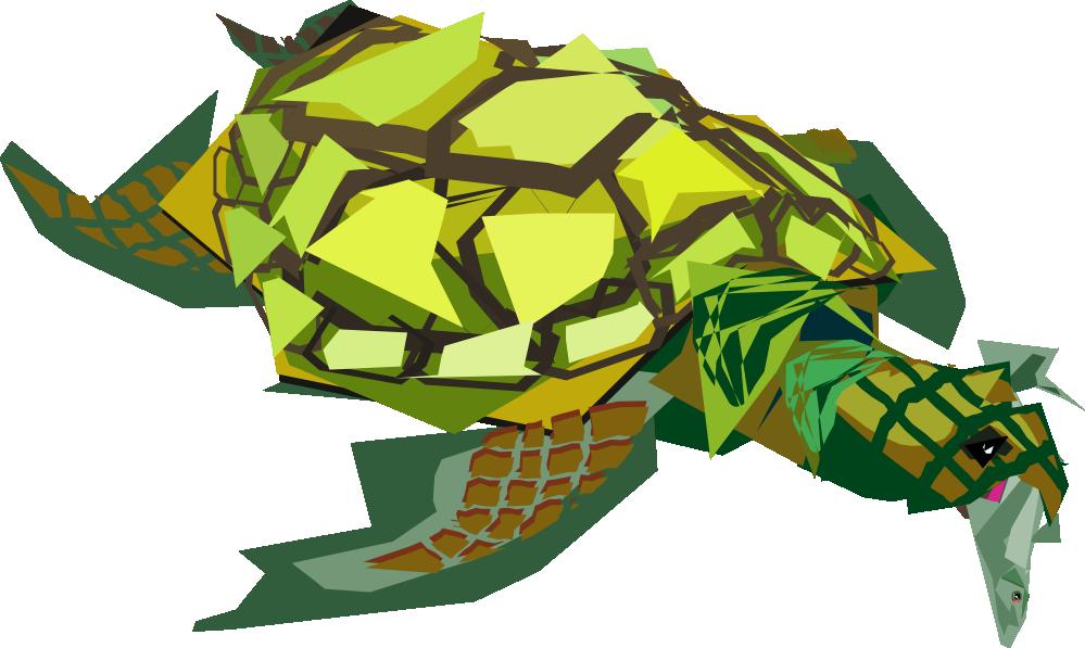 Clipartist net clip art. Clipart turtle gambar