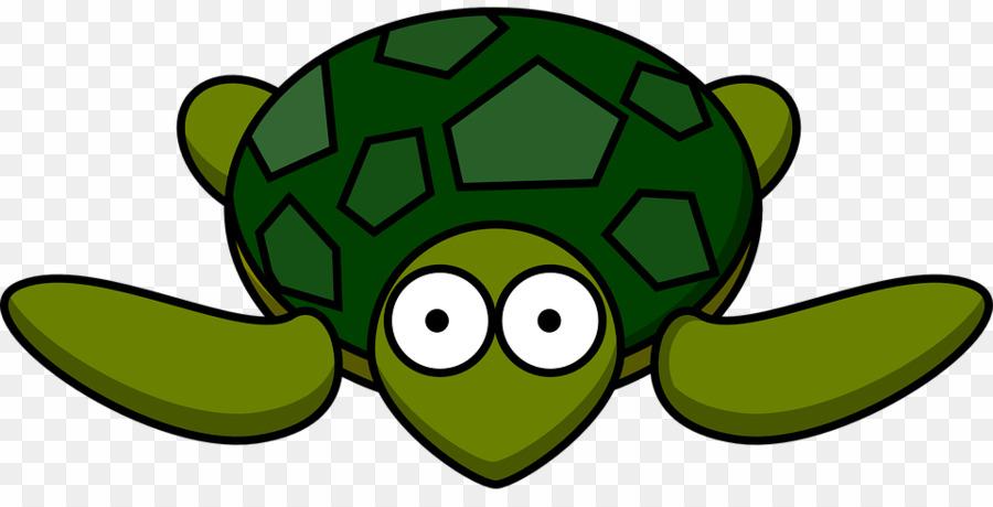 Cartoon png download . Clipart turtle gambar