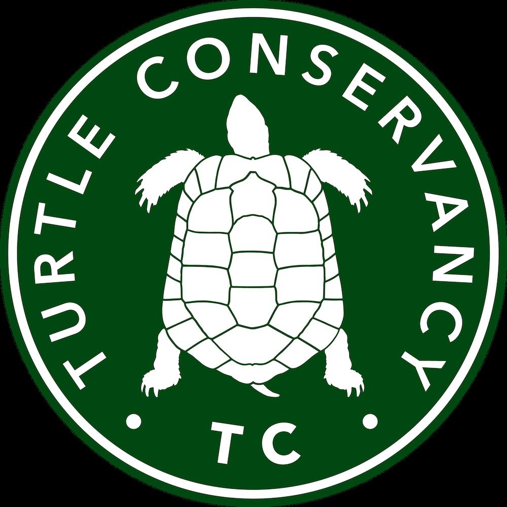 Clipart turtle geometric. Conservancy tortoise program