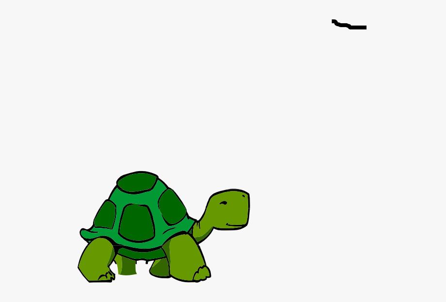 Clipart turtle green turtle. Clip art small free