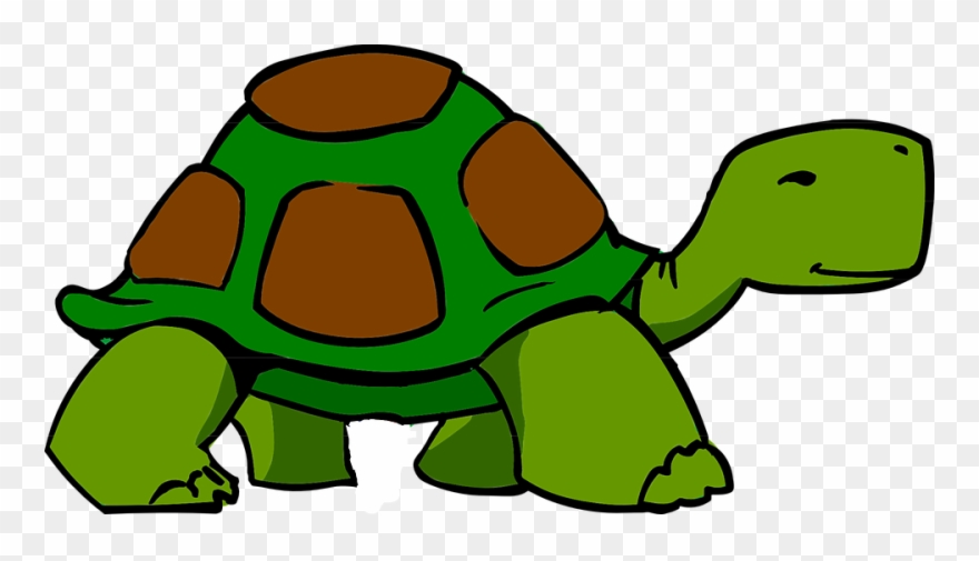 Pet clipart green turtle. Png download pinclipart
