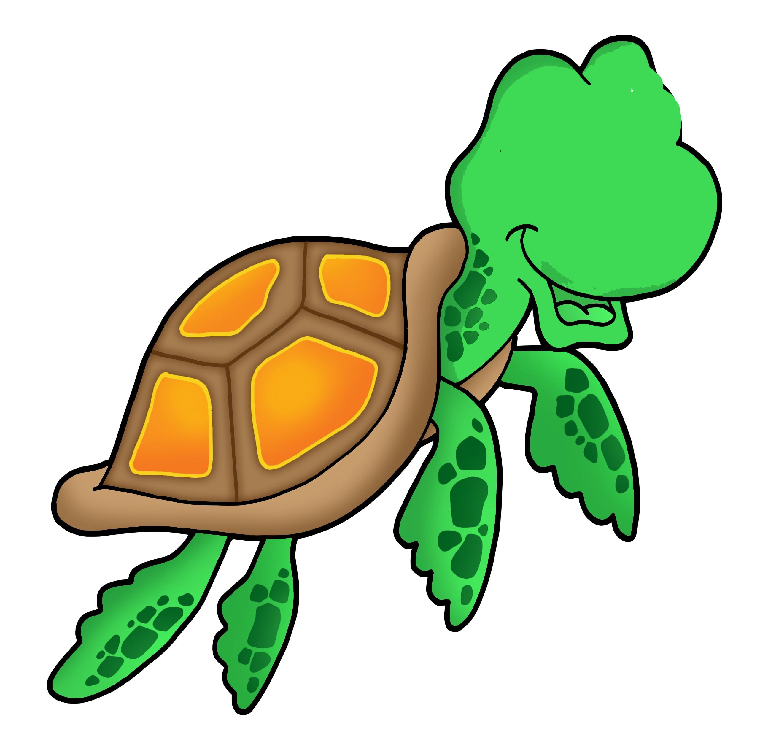 Home zafar nuri. Clipart turtle logo