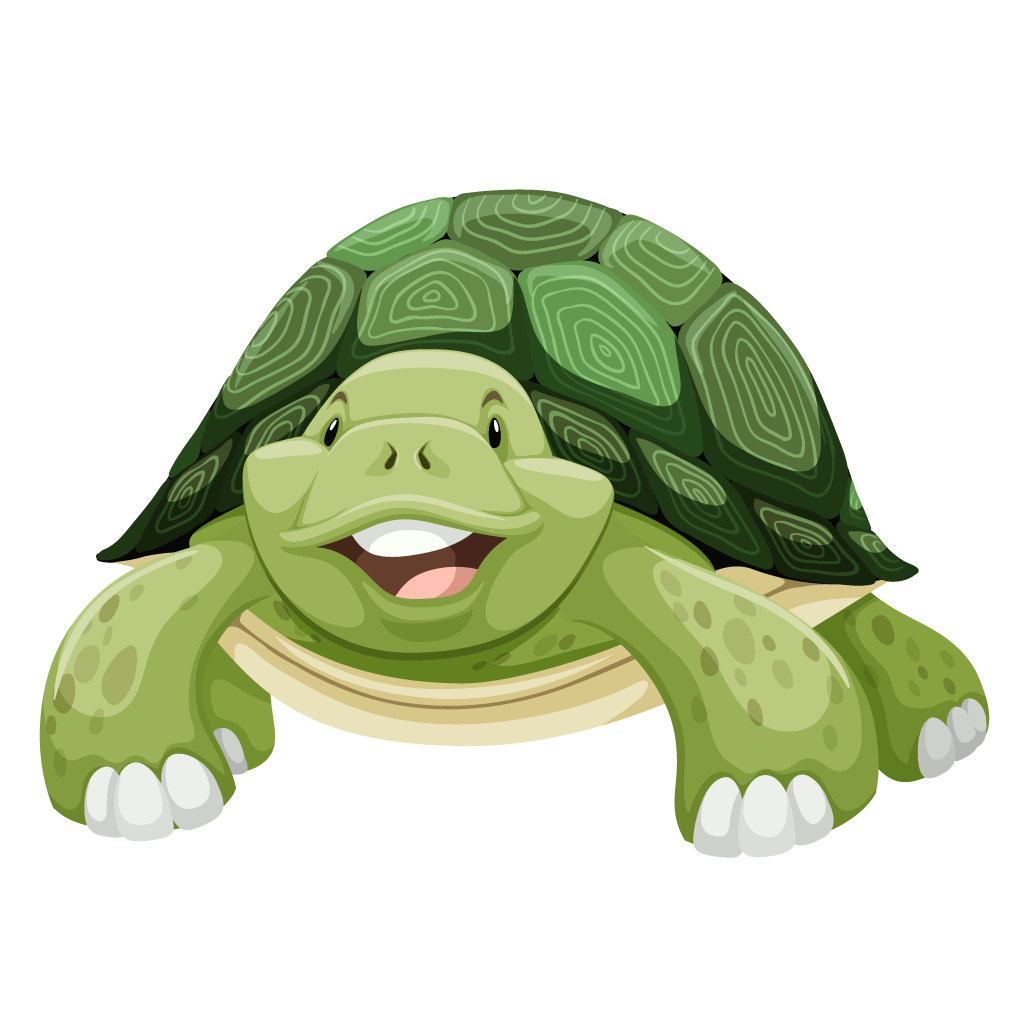 Clip art green cartoon. Shell clipart sea turtle