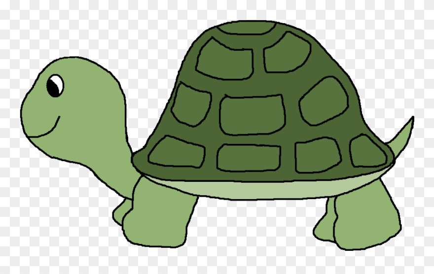 Clip art cartoon png. Clipart turtle pond turtle